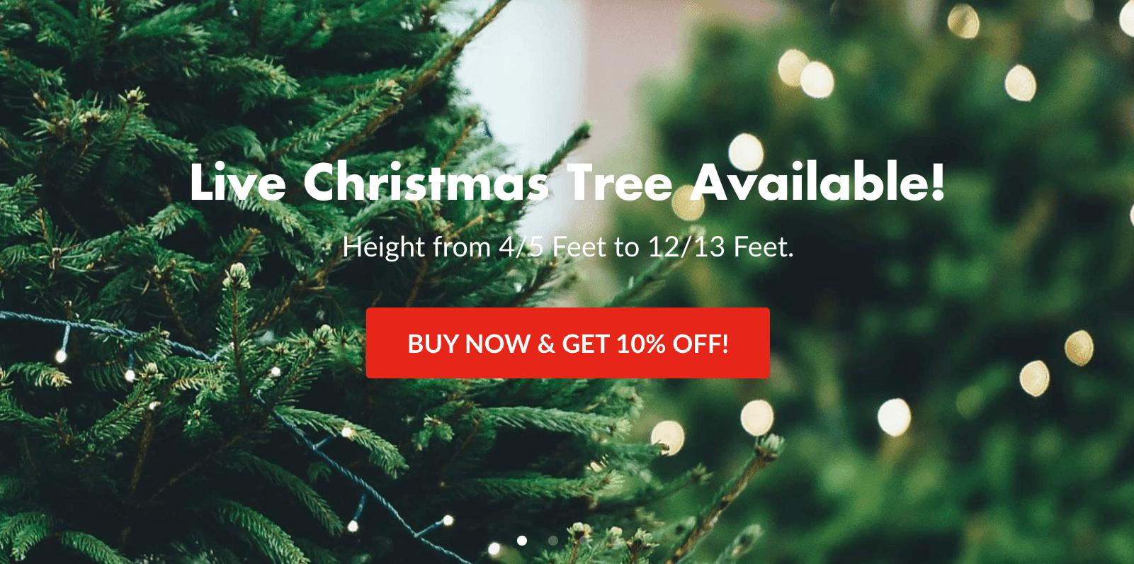 christmas-tree-online-shop-malaysia-floristika