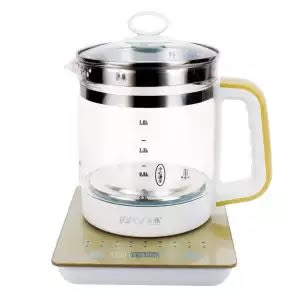 Best electric kettle with timer for heating milk