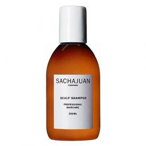 Best shampoo for oily scalp with dry ends