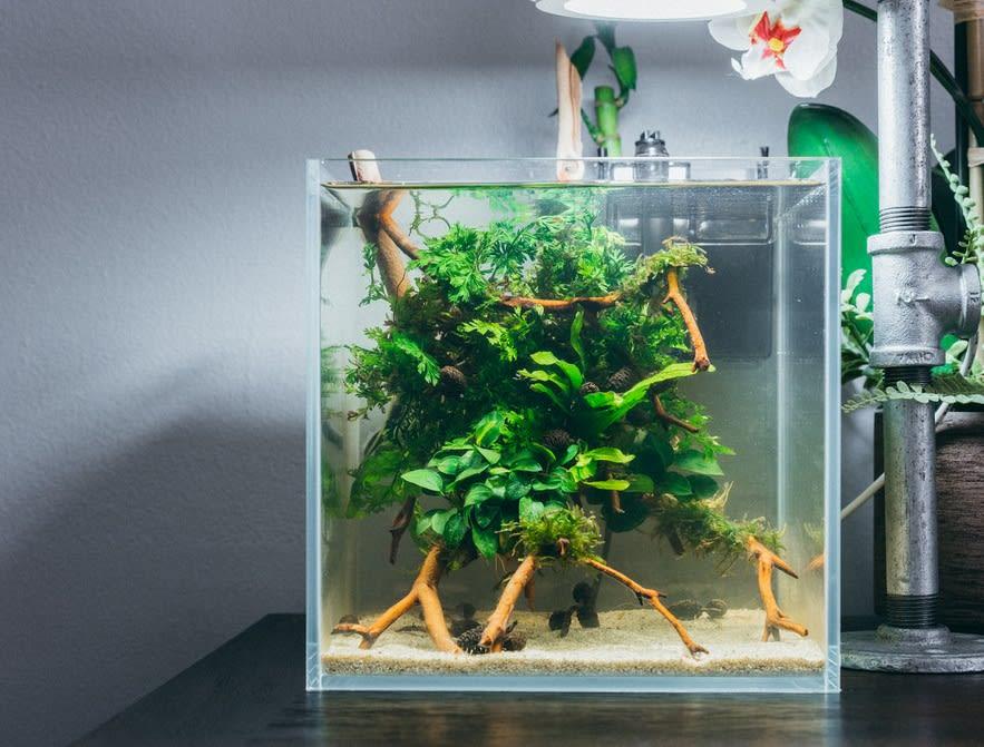 10 Pompa Aquarium Bagus Dengan Spesifikasi Terbaik Di Indonesia 2021